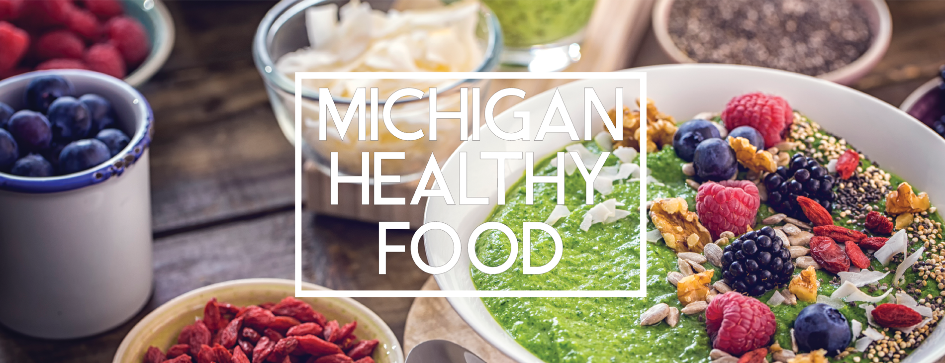 Michigan Healthy Food About Us
